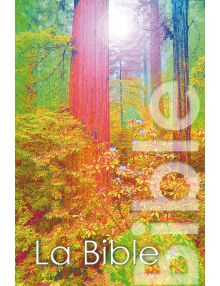 Bible segond 1979 rigide illustrée