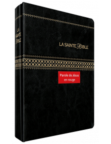 La Sainte Bible (Louis segond 1910)